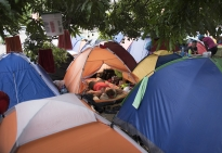 Tents are set side-by-side in close proximity at the Caritas shelter.